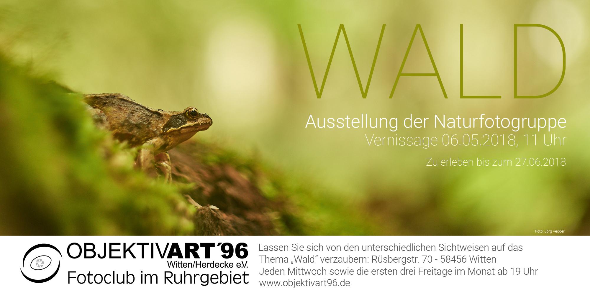 WALD – Eine Ausstellung der Themengruppe Naturfotografie