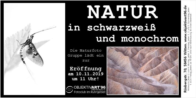 """""""Natur in schwarzweiß und monochrom"""" – Eine Clubausstellung der Themengruppe Naturfotografie"""