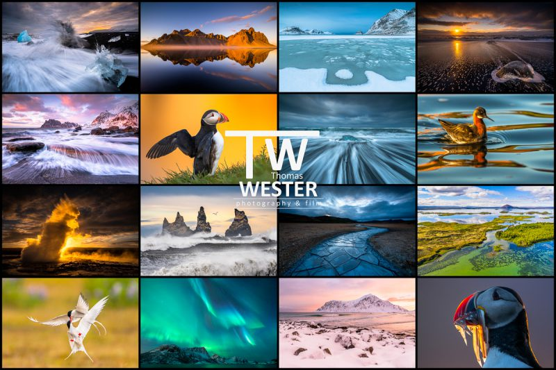 """Thomas Wester """"Island und Norwegen"""""""